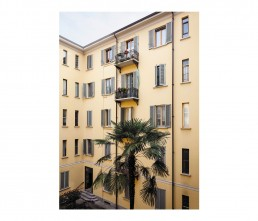 cm9 - architects - interior - Alberto Strada - palm